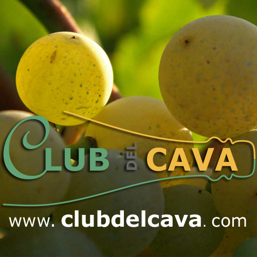 Enjoy Wine | CLUB DEL CAVA